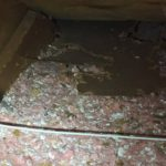 Damage to insulation in an attic