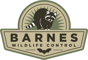 Barnes Wildlife Control photo link